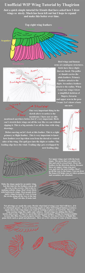 Very Basic Wing Tutorial