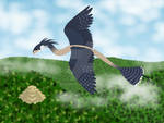 Flying High  Gift Art  By Peregrinefalconlady