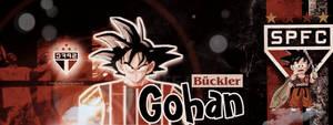 Gohan 2