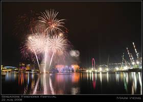 SG Firework Festival VI