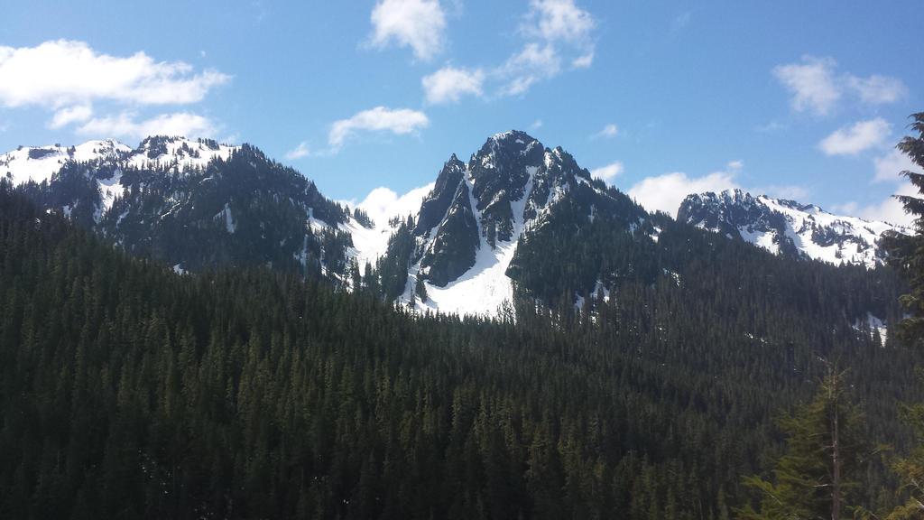 A Peak In Mt Rainier National Park by Furrama