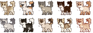 4/10 adopts open
