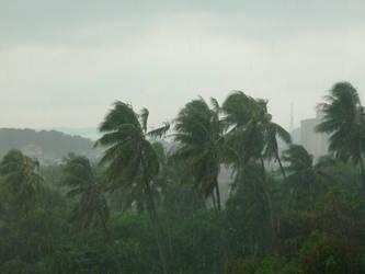 Rainy day by Ulquiorra-Moka