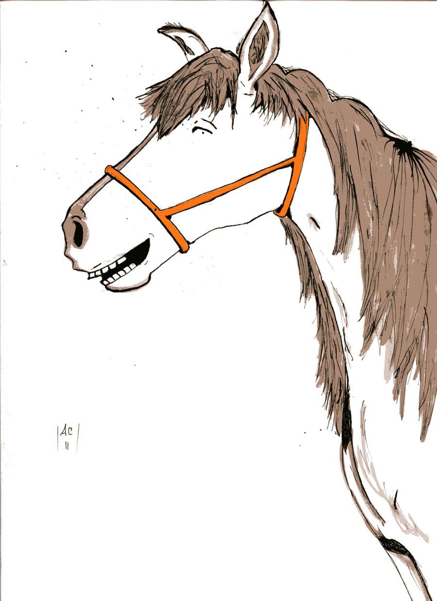 happy horse eend