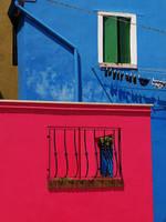 Colours by hadeeldar