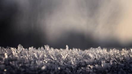 frost by hadeeldar