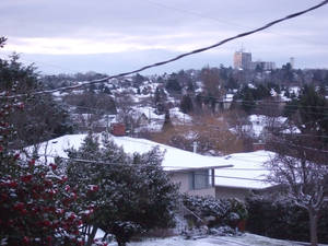 Winter In Victoria 02