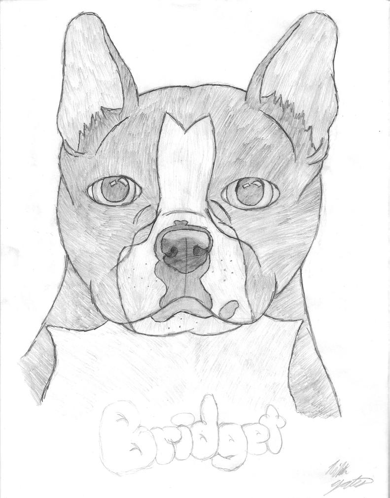 Dog Drawing Images Dog Drawing by Wolfgirl0992