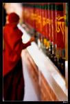 Spin for Tibet