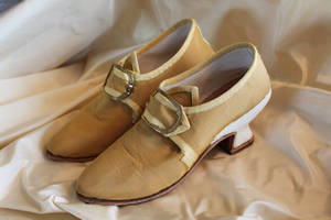 Silk Shoes
