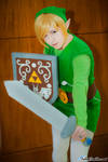 On Guard! - Toon Link