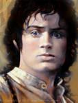 Frodo in Lothlorien