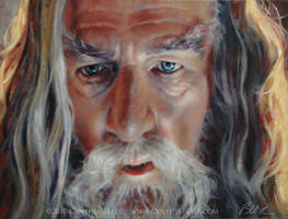 Gandalf The Grey by Cynthia-Blair
