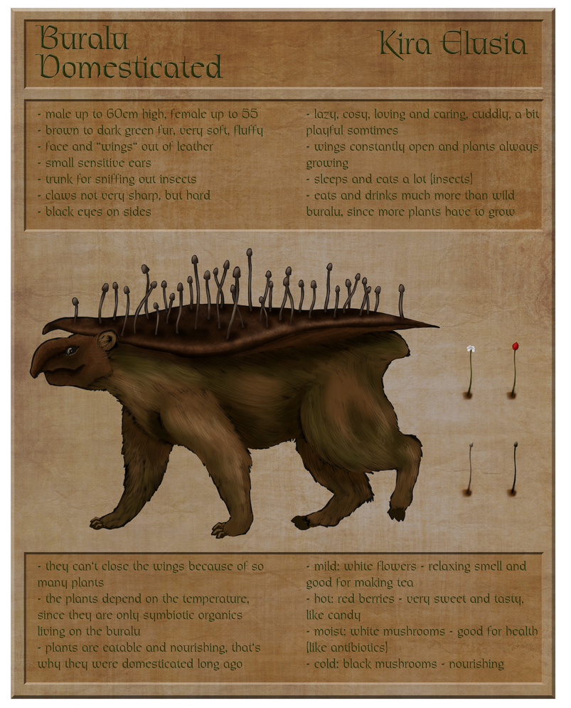 Contest: Design a Species - Buralu 2 by KiraElusia