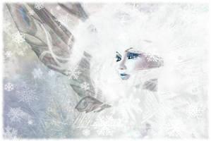 Blizzard by Freyja-M