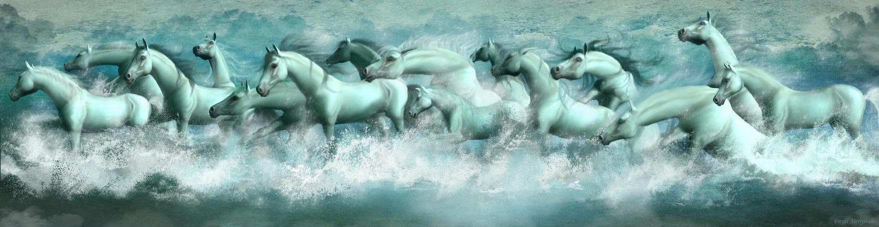 Seahorses by Freyja-M