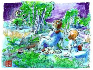 white stars and birch tree bark