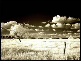 Infrared I by OnkelGonzo