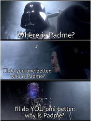 Who's Padme??? by PitZagafull