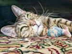 Tyler Kitty
