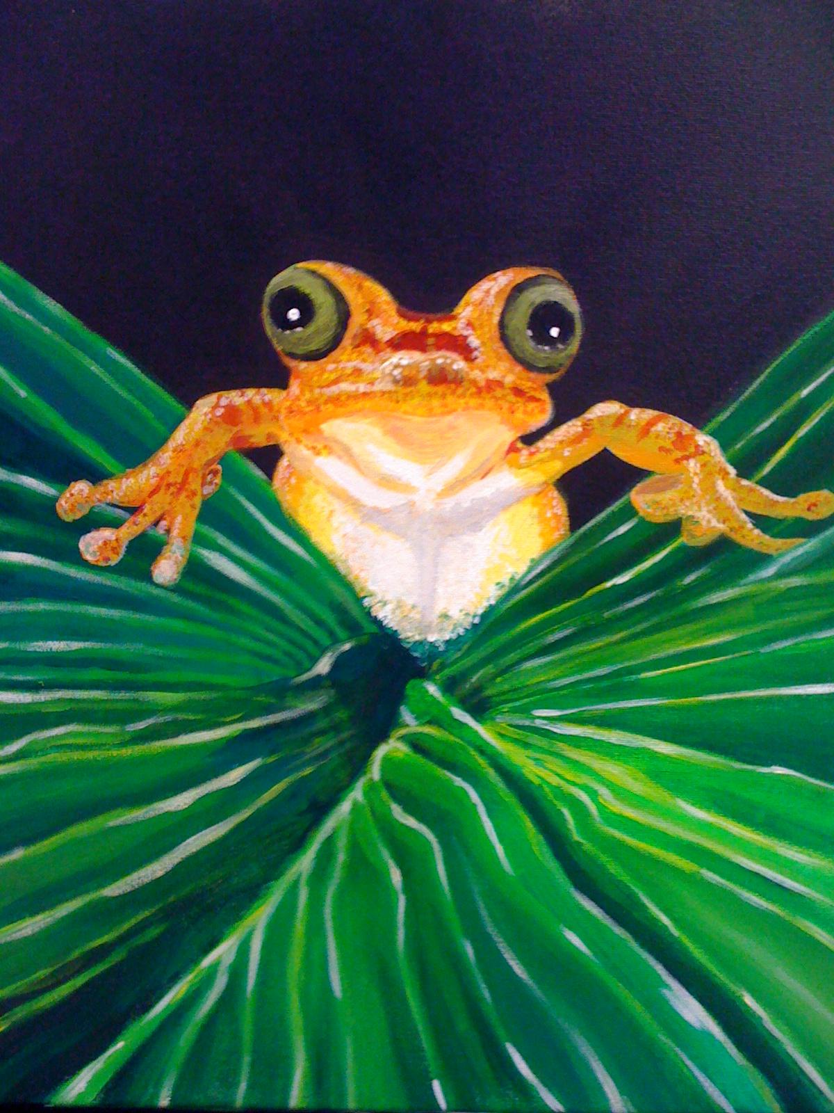 Jungle Frog Painting. by Albinodunmer on DeviantArt