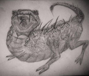 Lizard Sketch Thingy... by Jahnfo