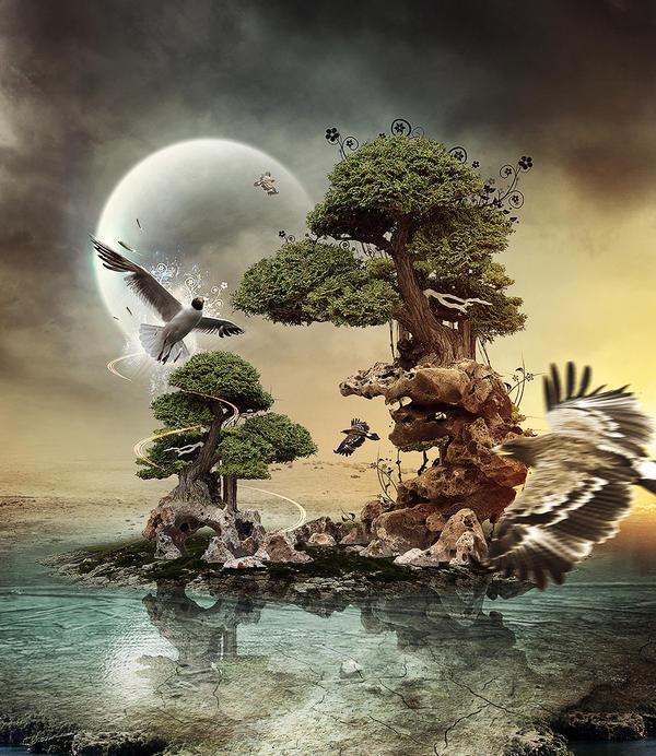 Aviary by DerekEmmons