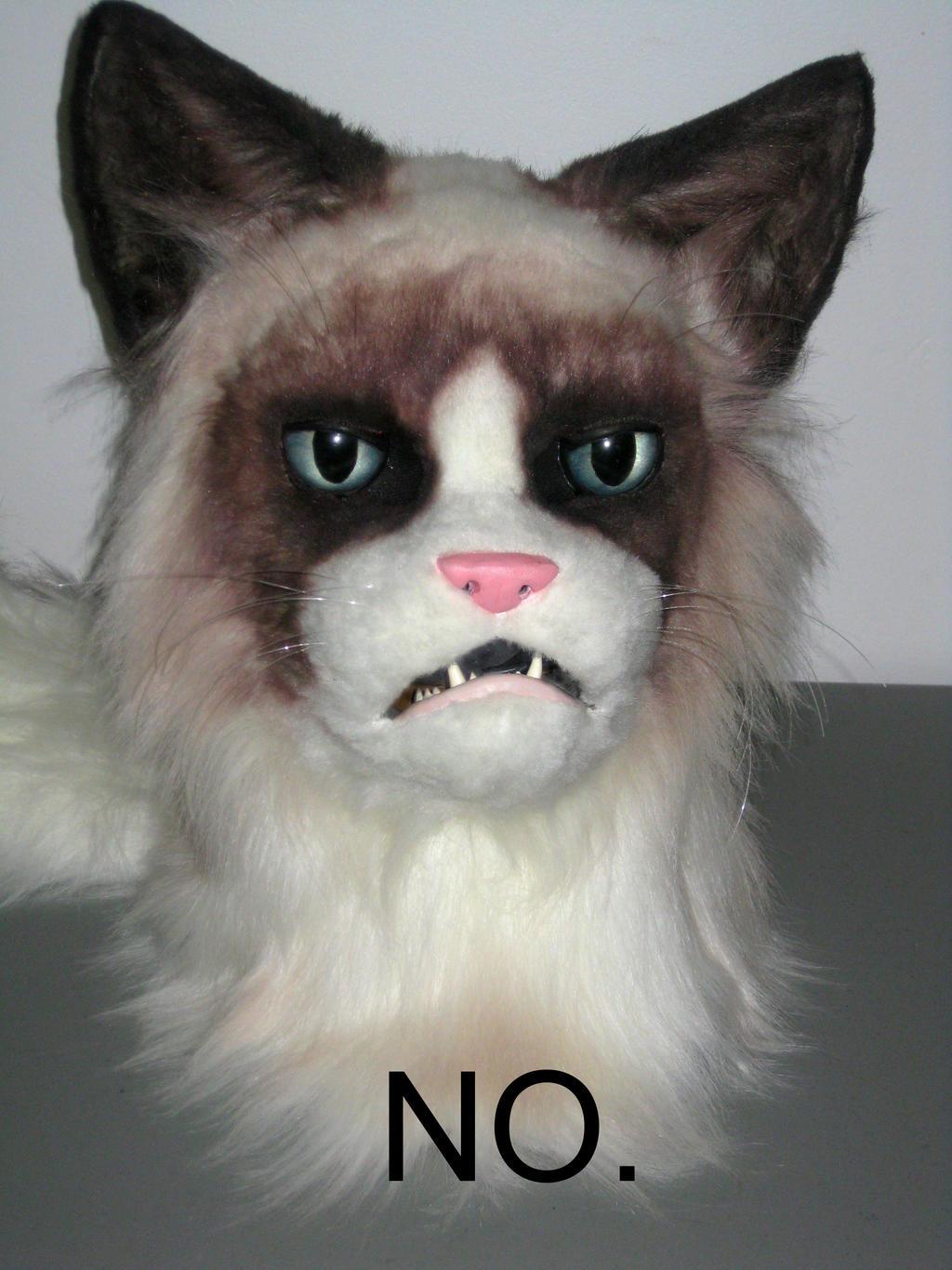 Grumpy Cat Mask by MaewynShadowtail