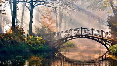 bridge-Sun-beams-light-morning-river-park-fairy-ta by emmakissiesArt