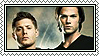season 6 winchesters stamp by Sara-Devestation