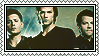 supernatural season 6 stamp by Sara-Devestation