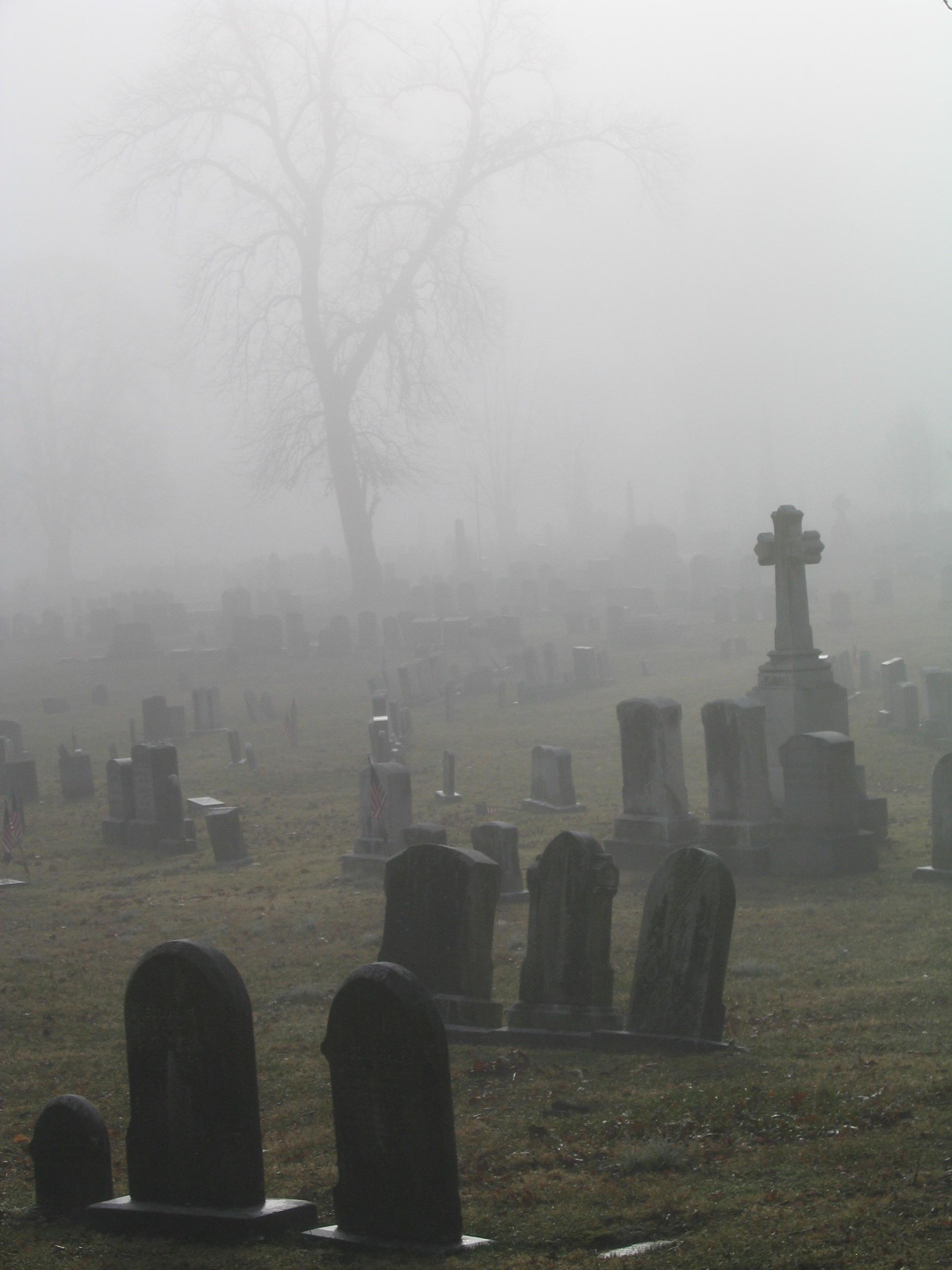 Foggy Graveyard By ErinRadPhoto