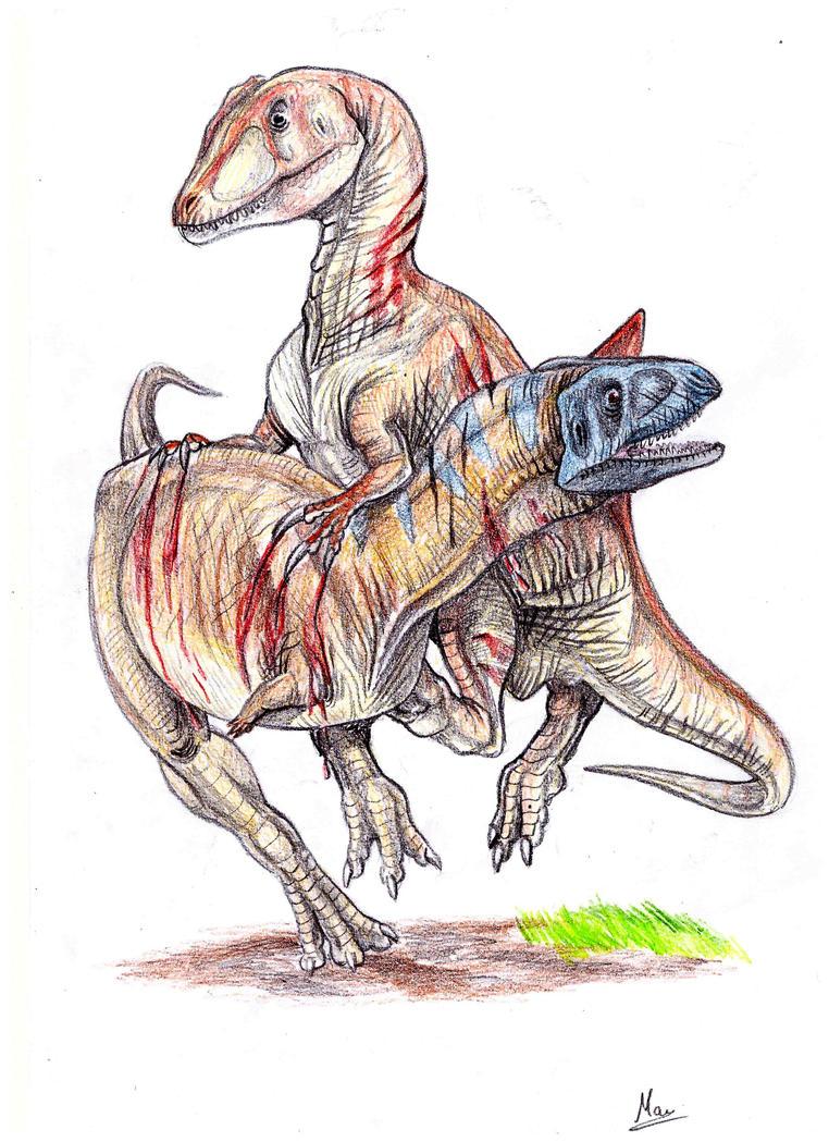 [Image: concavenator_vs__aucasaurus_by_moricemon...6o572j.jpg]