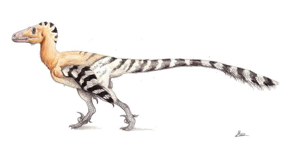 Deinonychus antirrhopu...