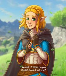 Zelda BotW: New hair