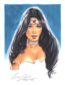 Wonder Woman 6x8