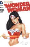 Wonder Woman Torso