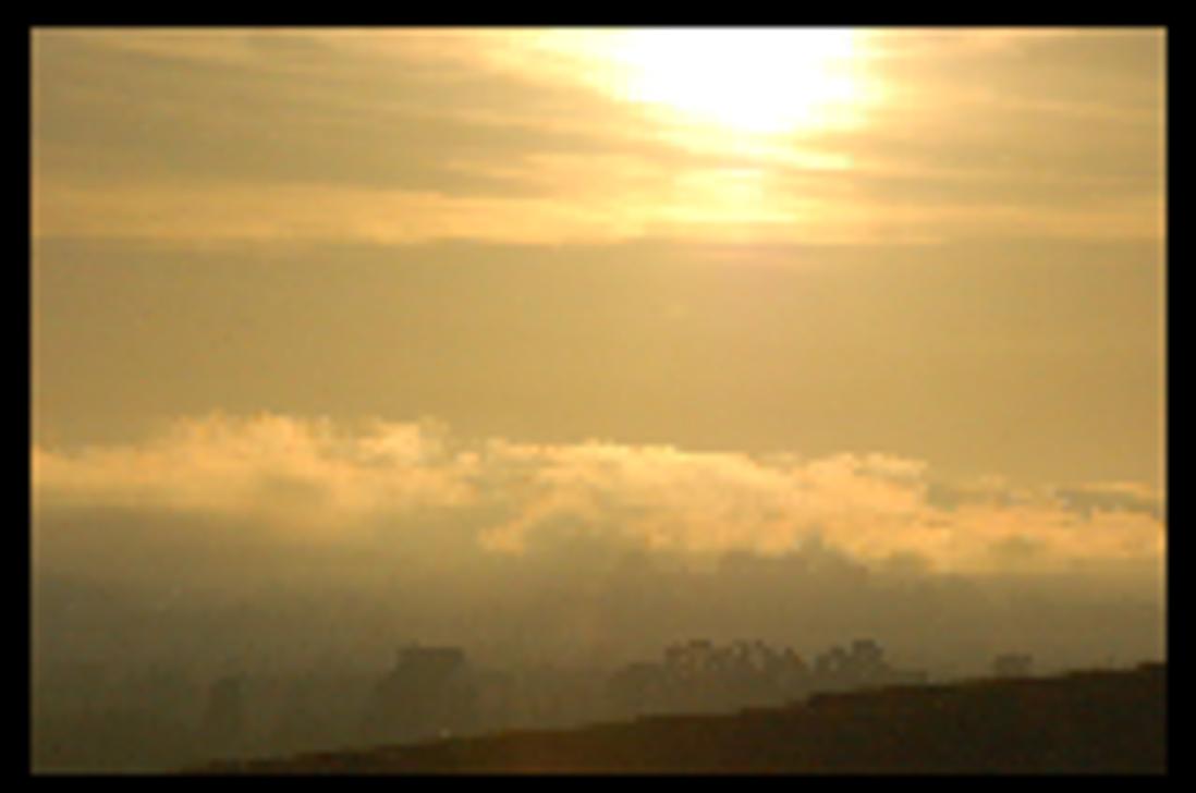 Sonoma Fogbank by smfoley