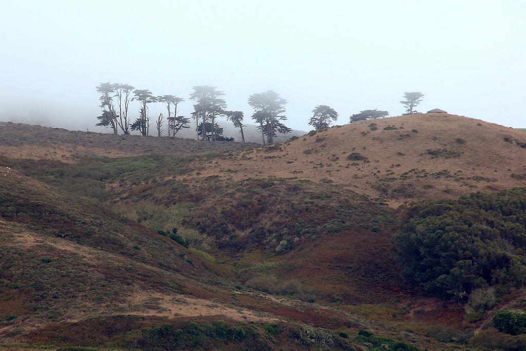 Northern California Coast by smfoley