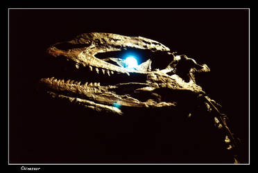 Chinasaur 1 by vbgecko