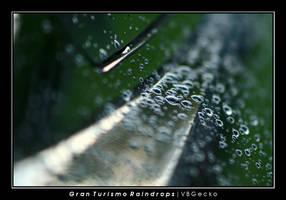 Gran Turismo Raindrops by vbgecko