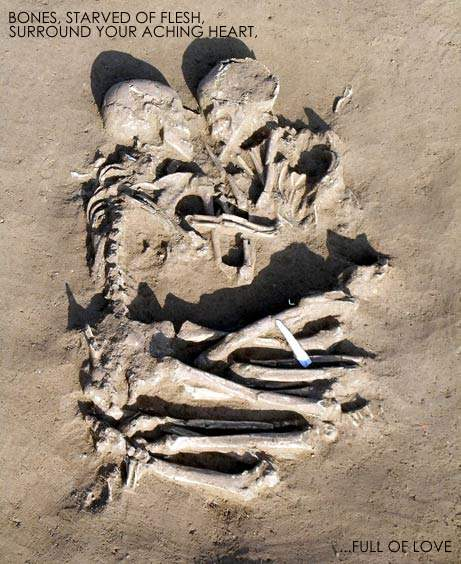 Bones. by SkulktheNeonFox