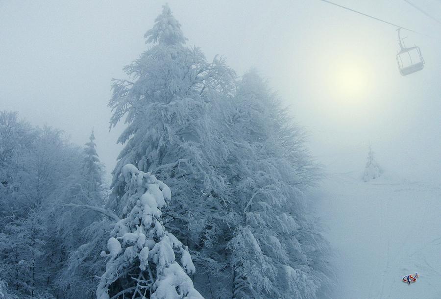 Winter fog by valiunic