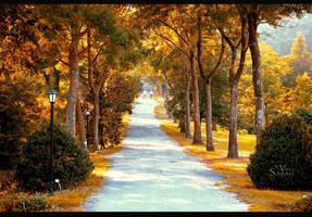 Take a walk II by valiunic