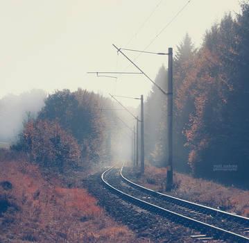 Way through the fog by valiunic