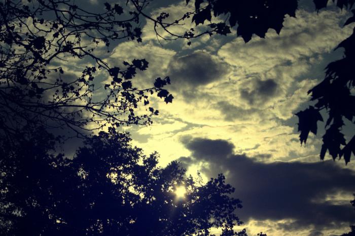 Open Sky by vrupatel