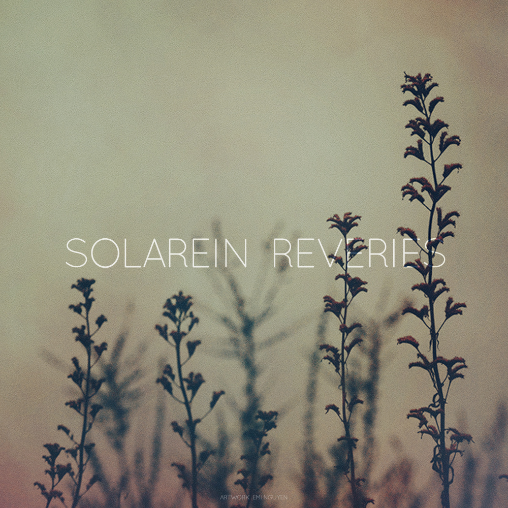 Solarein - Reveries - cover by vrupatel