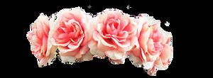 Pink Flower Crown PNG