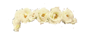 White Flower Crown PNG by halo-2fab4u-styles on DeviantArt