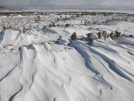 Rivulets of snow